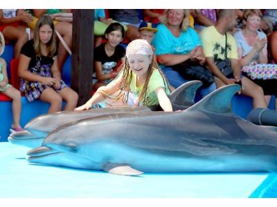 ОПК Пицунда, развлечения, анимация, дельфинарий
